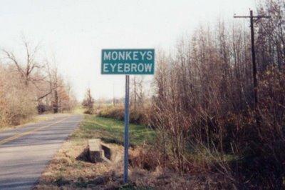 http://myoldkentuckyroadtrip.files.wordpress.com/2012/02/monkeys-eyebrow.jpg