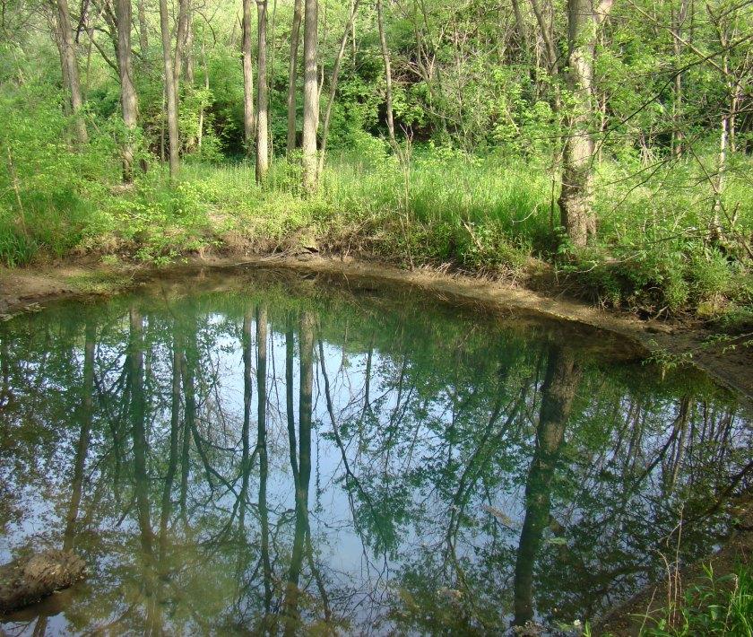 McConnell Springs Lexington Kentucky Blue Hole